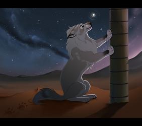 Firefly in the Desert by KohuStudios