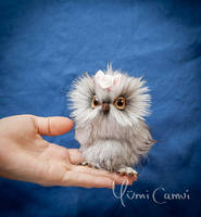 Little baby owl Lisa by YumiCamui
