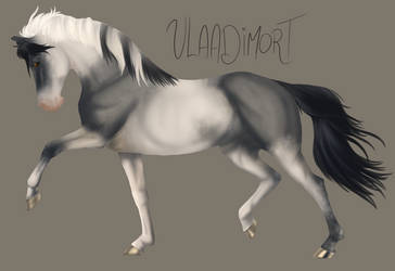 Horse Painting pratice Vlaadimort by HarpyRex