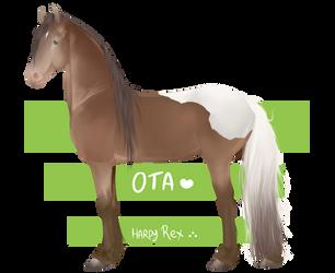 Horse OTA ~ Points by HarpyRex