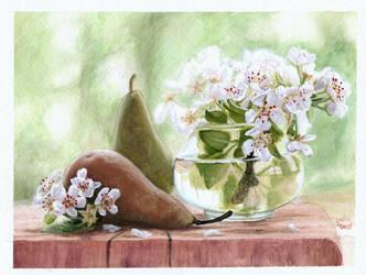 Pear Flowers by littlesapphire