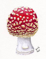 Toadstool by littlesapphire