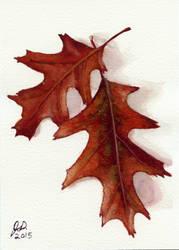 Autumn Leaves by littlesapphire