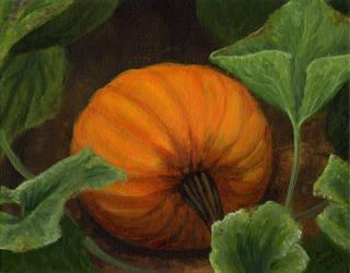 Pumpkin by littlesapphire
