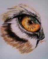 Quick Sketch - Tiger Eye by JonnoGerritsen