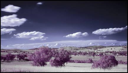 Candy Land by CapturingTheNight
