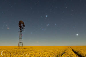 Field Of Dreams by CapturingTheNight