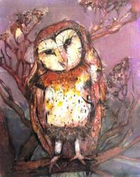 Barn owl by JetJames