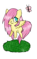 FlutterFilly by Pachipie