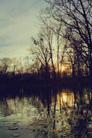 Lake 02 by Mis-kin