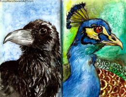 Birds from sketchbook by FuzzyMaro