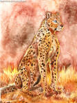Cheetah by FuzzyMaro