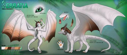 Serratia ref sheet-anthro and feral form by FuzzyMaro