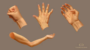 Hand Study by cdesign-art