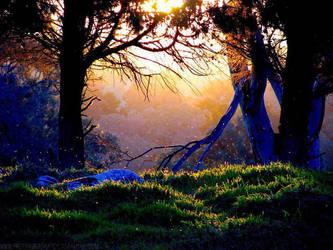 The Light Of Dusk by PrepareForImpact