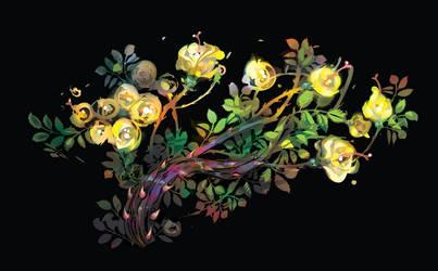 roses bush by LimKis