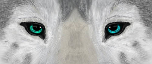Magical wolf eyes by yamimaximus