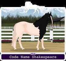 WSA Code Name Shakespeare by SaandStoorm