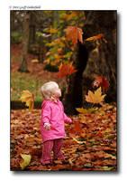Autumn by BritishBeef