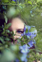 Flower sister4 by fae-photography