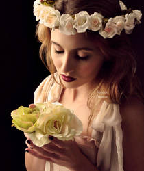 Fabric Flowers by fae-photography