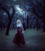 Wanderer by fae-photography