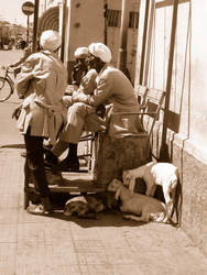 the little lamb's market by aRU1