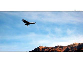 El condor pasa by dark-echo