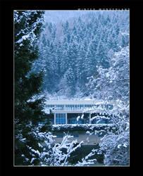 winter wonderland by dark-echo