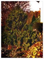 Garden 01 by Yughues