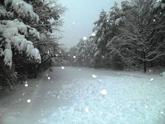 Blizzard by banisaprima