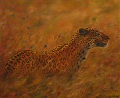 predator by Leebea