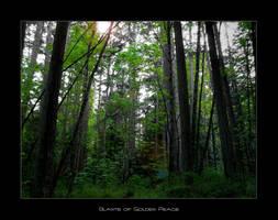 Slants of Golden Peace by BlackScarletLove