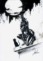 Catwoman on the roof by HM1art