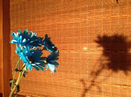 A Blue Flower's Shadow by slim58