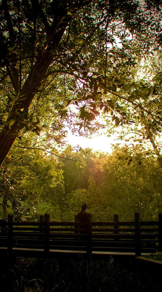 Peacemaker Kurogane: Solitude by shadoewhunter
