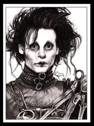Edward Scissorhands by lapam04