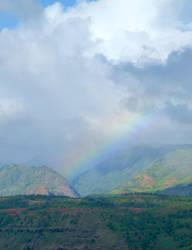 Hawaiian Rainbows are the Best by MogieG123