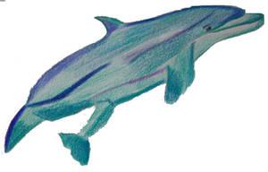 dolphin by rockstar-kat666