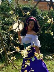 Esmeralda Cosplay by Lady-Ragdoll