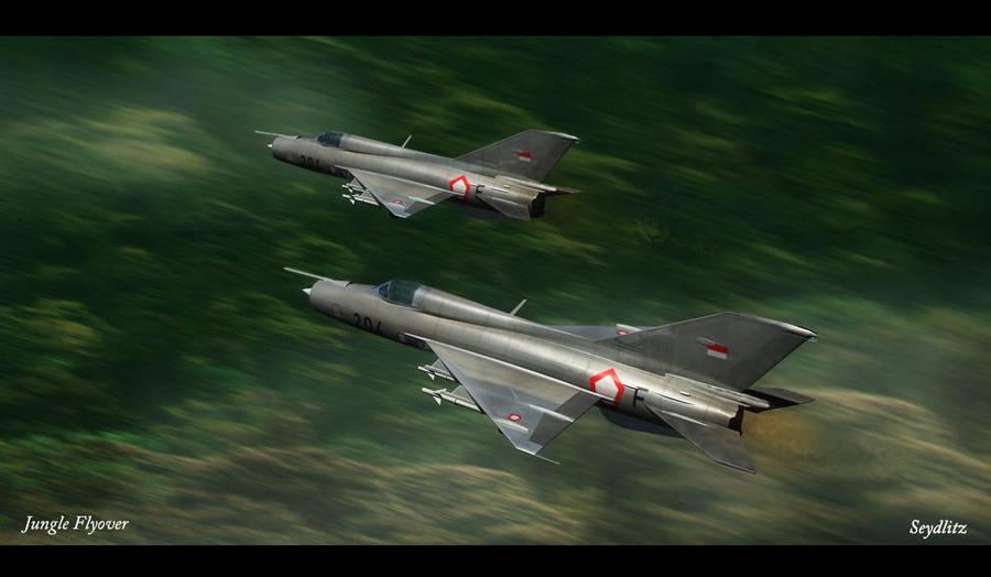 Jungle Flyover by FWSeydlitz
