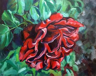 Acrylic Rose by capwak