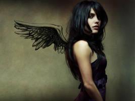 Dark Wing Woman by masterwuwu