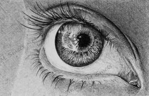 BIC eye by photonline