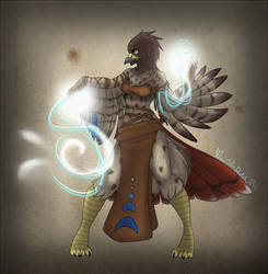 Cmsn Red Tailed Hawk Shaman by sugarhighstudios