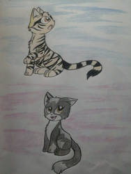 Amberstripe and Rockypaw: Windclan medicine cats by NinjaTurtleGirl