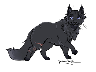 12. Cinderpelt by Spectrail