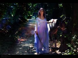 Aragorn where are U?! by LicorneZsu