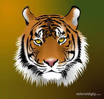 A Tigers Head by microUgly