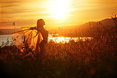 sunset fairy by gestiefeltekatze